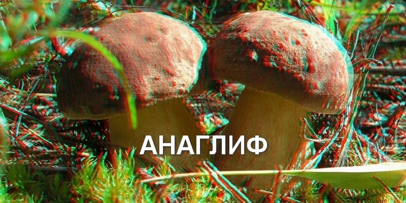 3DImage-badanov2